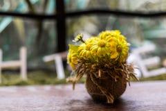 Букет хризантемы Стоковые Изображения RF