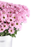 Букет хризантем Стоковые Фотографии RF