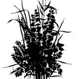 букет цветет вектор Стоковое Изображение RF