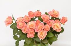 букет цветет весна Стоковые Фото