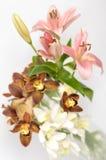 букет цветет весна Стоковые Фотографии RF