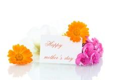 букет цветет лето Стоковая Фотография