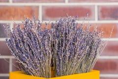 букет цветет лаванда Стоковое Изображение