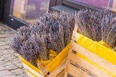 букет цветет лаванда Стоковое Фото