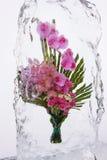 Букет цветка в льде Стоковое фото RF