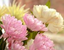 Букет цветка Стоковые Изображения
