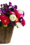 Букет цветков астры стоковые фото