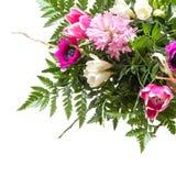 Букет цветков весны изолированных на белизне, угловой предпосылке Стоковая Фотография