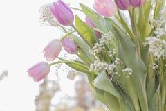 Букет цветков весны Стоковое Изображение RF