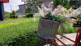 Букет цветков в корзине велосипеда стоковые фото