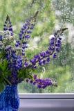 Букет цветков за ненастным окном Стоковые Изображения RF