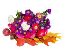 Букет цветков и листьев астры стоковые изображения