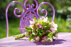 Букет цветков морозников на таблице сада стоковое изображение