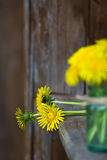 Букет цветков одуванчика Стоковое фото RF