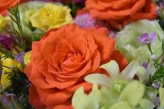 Букет цветков роз близкий вверх и желтые и оранжевые розы закрывают вверх стоковые фотографии rf