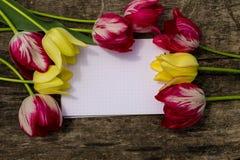 Букет цветков тюльпана и пустого блокнота на деревенской деревянной предпосылке Стоковое фото RF