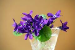 Букет цветков фиолетов в винтажном кристаллическом стекле на золотой предпосылке стоковое фото