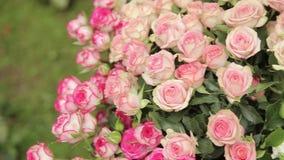 Букет цветков видеоматериал