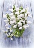 Букет цветков snowdrops в вазе Стоковая Фотография RF