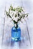 Букет цветков snowdrops в вазе Стоковые Фотографии RF