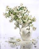 Букет чашки jasmin и чая Стоковые Изображения