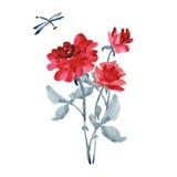 Букет элегантных красных роз с серым цветом выходит и dragonfly на белую предпосылку акварель Стоковое Изображение RF