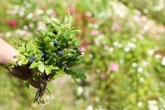 Букет ягод леса Стоковое Изображение RF