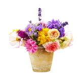 Букет ярких цветков лета изолированных на белизне стоковая фотография rf
