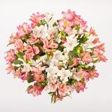 Букет Alstroemeria Стоковое Фото