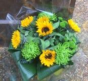 Букет Aquapack солнцецвета стоковое фото rf