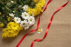 Букет camomiles на предпосылке мешковины с лентой листьев стоковая фотография rf