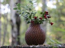 букет cowberry в керамической вазе стоковое фото rf