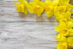 Букет daffodils на деревянной предпосылке на поднимающем вверх и правильной позиции Стоковые Изображения RF