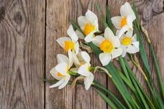 Букет daffodils на деревянной предпосылке Стоковые Изображения