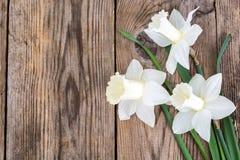 Букет daffodils на деревянной предпосылке Стоковые Фотографии RF