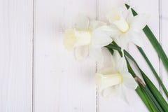 Букет daffodils на деревянной предпосылке Стоковые Изображения RF