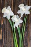 Букет daffodils на деревянной предпосылке Стоковое Фото