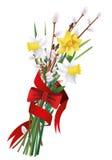 букет narcissus, верба pussy, цветки, лента, Стоковая Фотография RF
