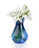 Букет snowdrop цветет в стеклянной вазе, изолированной на белизне Стоковое Изображение RF