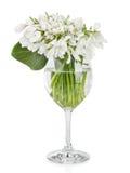 Букет snowdrop цветет в стеклянной вазе, изолированной на белизне Стоковая Фотография RF