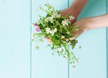 Букет wildflowers в руках Стоковое фото RF