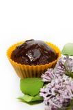 булочка шоколада свежая Стоковые Фотографии RF