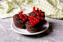 булочка шоколада с красной смородиной на белизне Здоровый десерт Стоковая Фотография RF