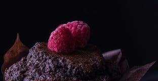 Булочка шоколада с пирожным поленики темным печет коричневый цвет десерта стоковое изображение