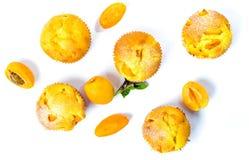 Булочки абрикоса с свежими фруктами на белизне Стоковые Фото