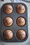 булочки шоколада двойные Стоковые Фото