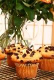 булочки шоколада обломока Стоковые Фото