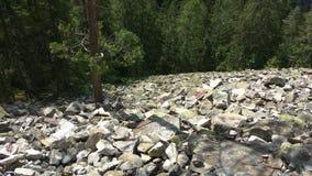 Булыжник горы Homyak стоковые изображения