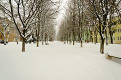Бульвар зимы в маленьком маленьком городе. Стоковая Фотография