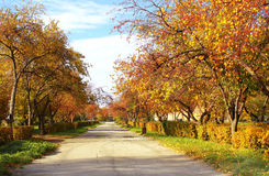 бульвар осени Стоковая Фотография RF